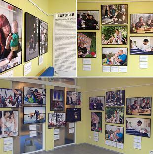 ''Elupusle - Rootsi pere roll ühiskonnas''